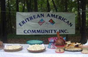Eritrean American Banner
