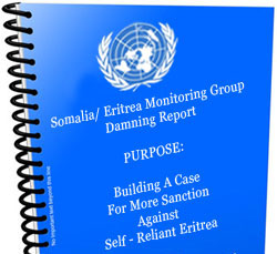 un_monitoring_group_report-2